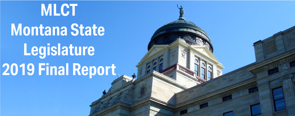2019 Legislative Report
